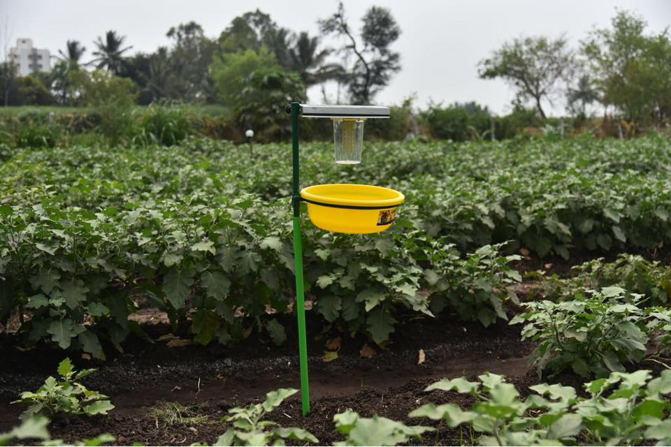 solar light trap - agriculture Ngo